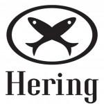 Promoção Hering Rapa: descontos