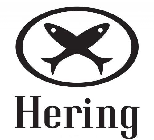 Promoção Hering Rapa