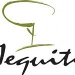 Como ser revendedora Jequiti – Representante